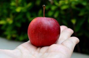 manzana cherry