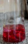 infusionando gin con remolacha